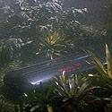 spock-coffin-125.jpg