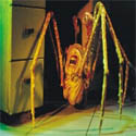 the-thing-spider-125.jpg