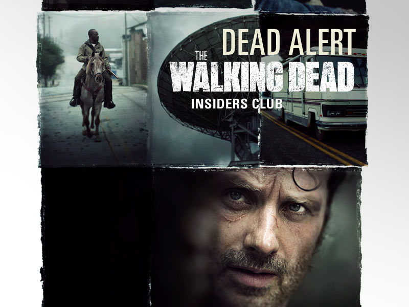 the-walking-dead-season-6-b-rick-lincoln-key-art-800×600-insiders-club-v3
