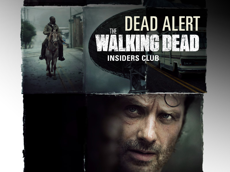 the-walking-dead-season-6-b-rick-lincoln-key-art-800x600-insiders-club