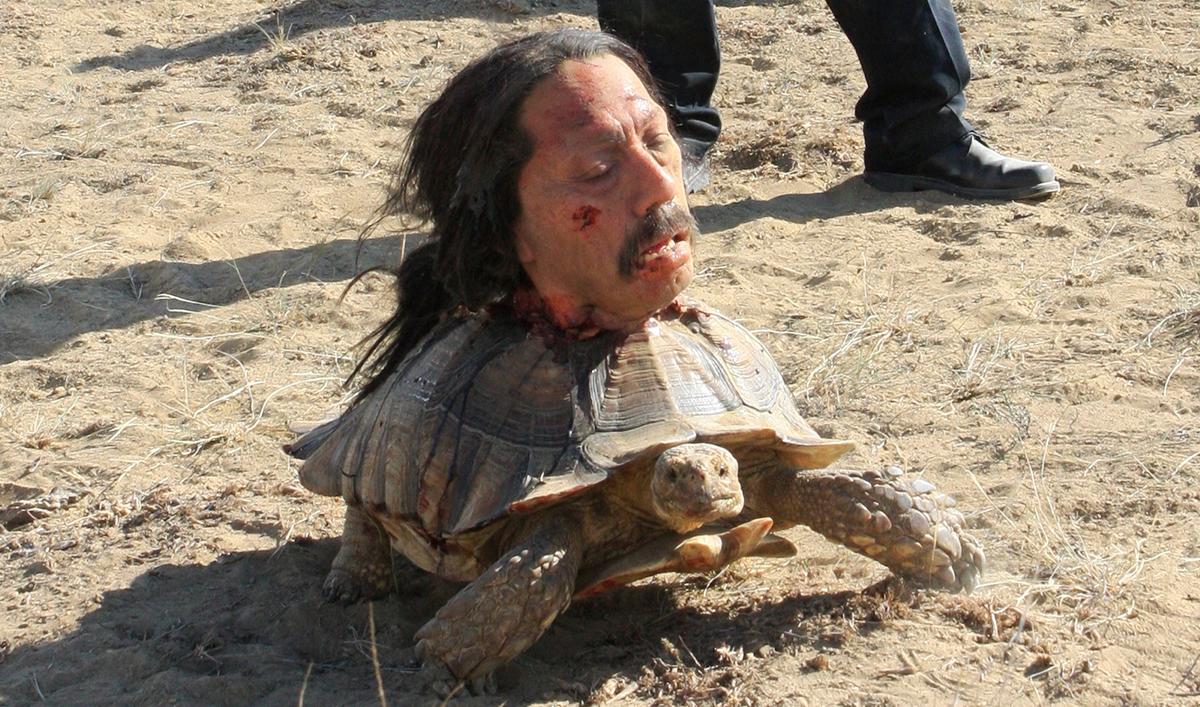 Vince Gilligan Talks <em>Bad</em>; Cast Member Runs for Albuquerque Office