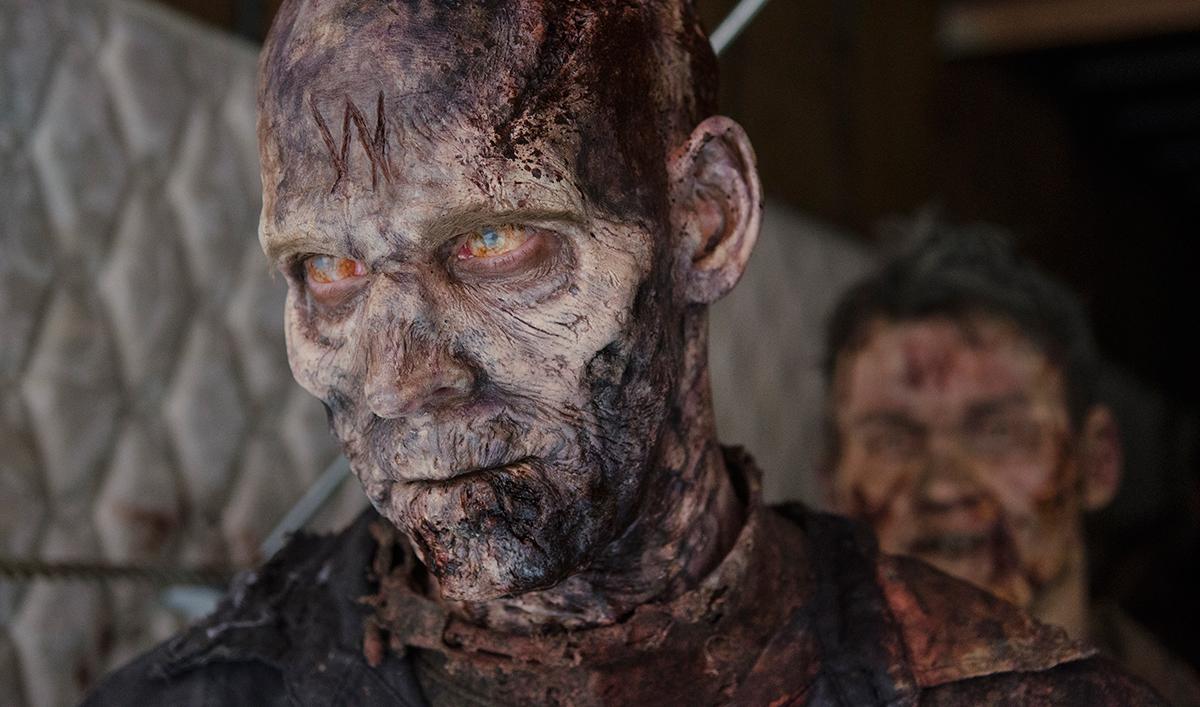 Norman Reedus Previews Season 6; Lauren Cohan Discusses the Wolves