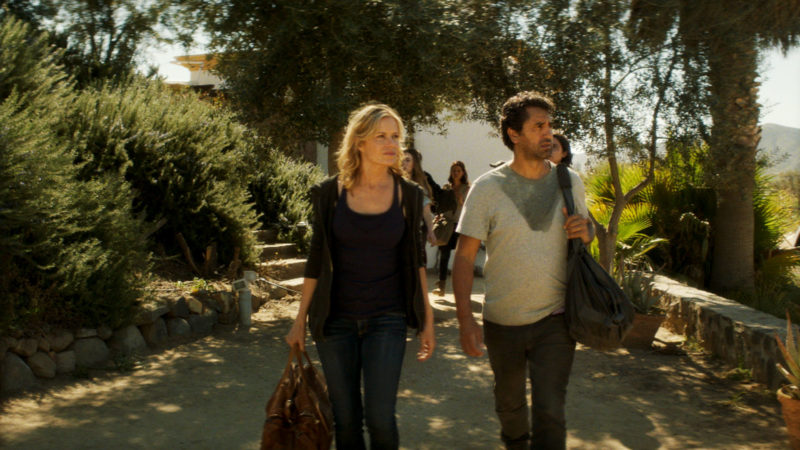 Where We Left off in Season 2A: Fear the Walking Dead