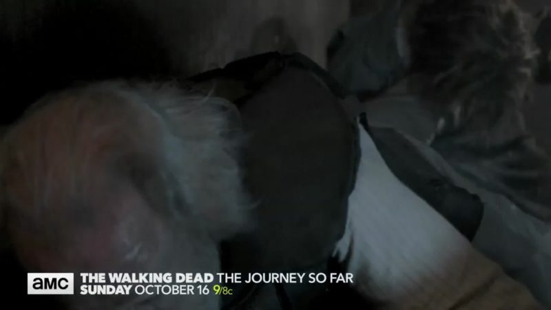 The Walking Dead: The Journey So Far: Hershel's Leg