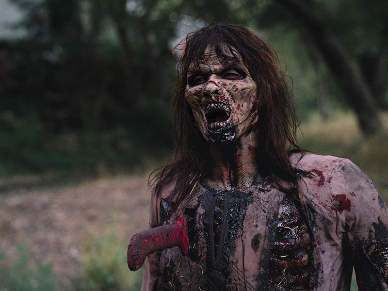 the-walking-dead-red-machete-episode-101-walker-800x600