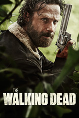 tve-flyout-TWD5A