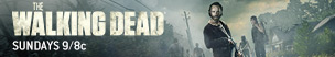 the-walking-dead-season-5-b-rick-lincoln-menu-sundays