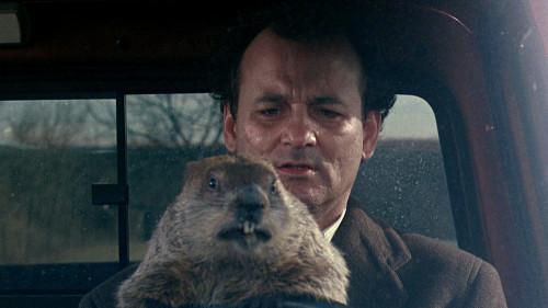 groundhog-day_01