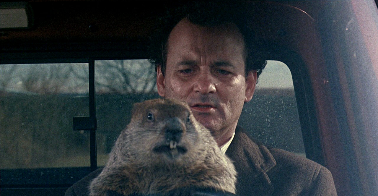 groundhog-day_01