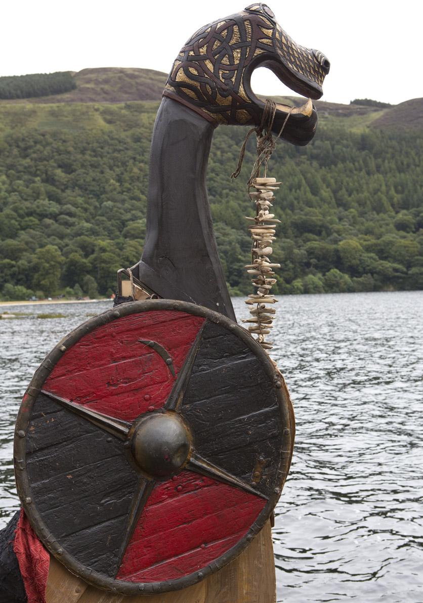 Vikings-amcpt-blog-8