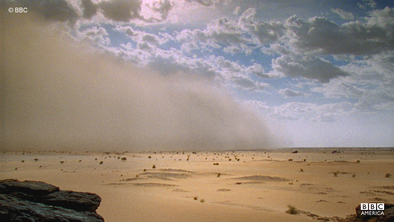 A massive dust storm sweeps through the African desert.