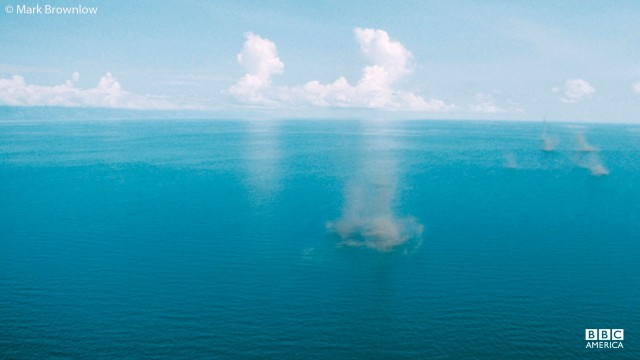 Swarm clouds of lake flies in Malawi.