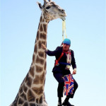 Safari Boris