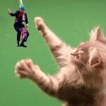 Kitty Boris