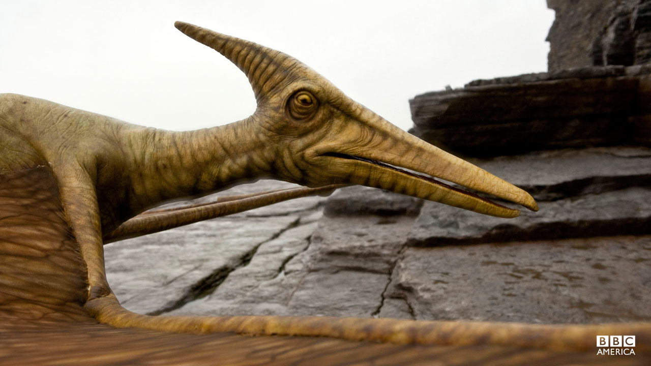 A pterodactyl swoops down.