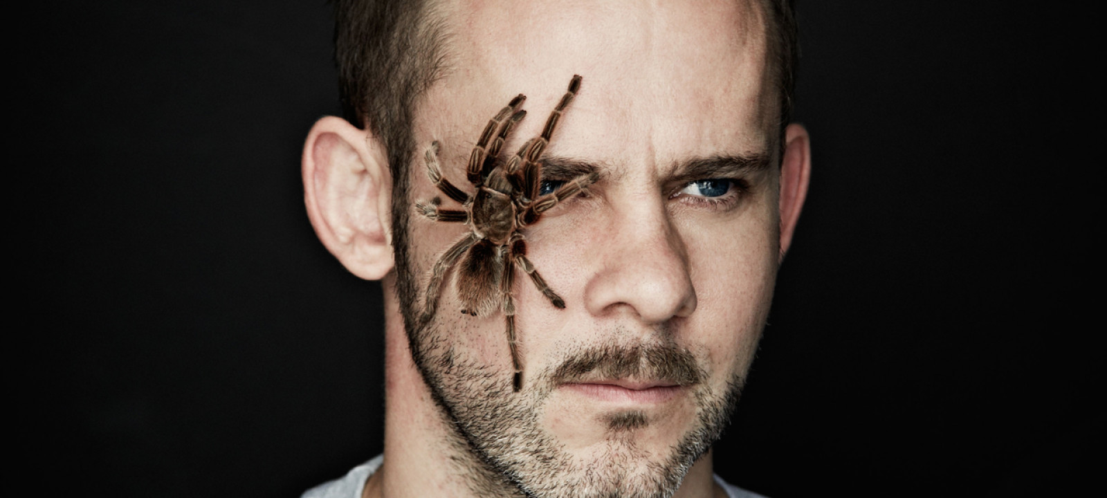 Dominic Monaghan spider
