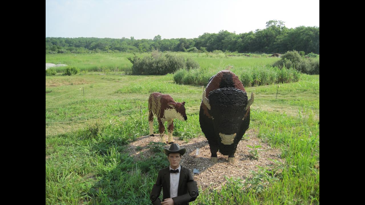 Visiting a brick buffalo at Powell Gardens in Missouri on the way to Lake Silencio. - Corwynn R.