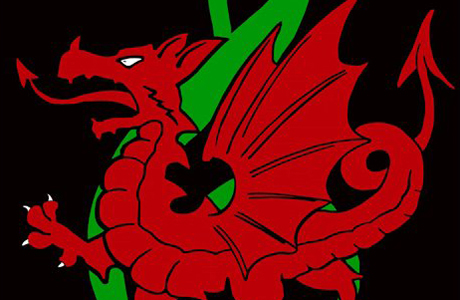 Welsh Logo, NEW