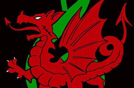Welsh Logo, NEW