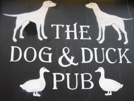 The Dog and Duck Pub