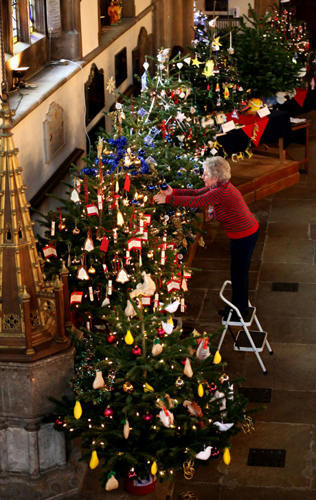 Charles visit to Bedfordshire. Sheila Smith from the Mothers Union, at St PaulÕs Church in Bedford, makes some final adjustments to Christmas trees ahead of the opening of the Christmas tree festival. The charity event is in its 12th year and is made up of 60 Nordman spruce Christmas trees with up to 4000 fairy lights in total. The festival opens tomorrow (Wednesday 4th December) and runs through until (Saturday 6th December). The Prince of Wales visited earlier today to have a look at the trees on display. Picture date: Tuesday December 3, 2013. See PA story ROYAL Charles. Photo credit should read: Chris Radburn/PA Wire URN:18370932