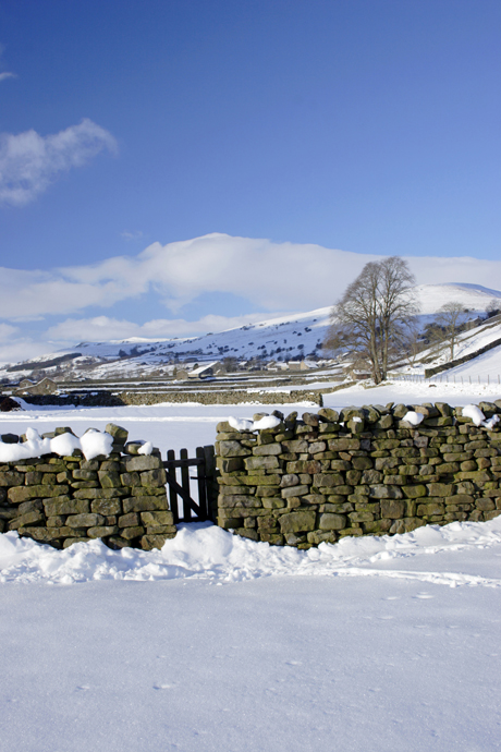 Drystone wall and gate in snow covered valley bottom, Gunnerside, Swaledale, Yorkshire Dales N.P., North Yorkshire, England, december (Minden Pictures/AP Images)