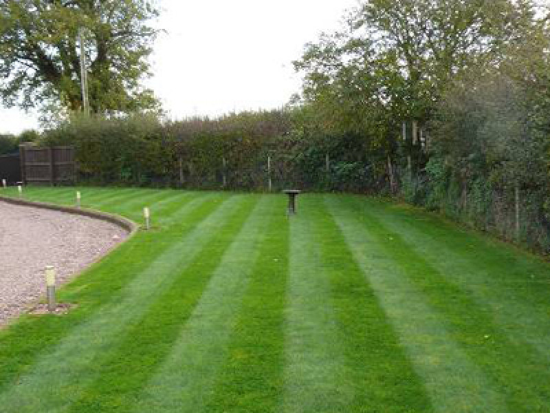 Freshly Mowed Grass