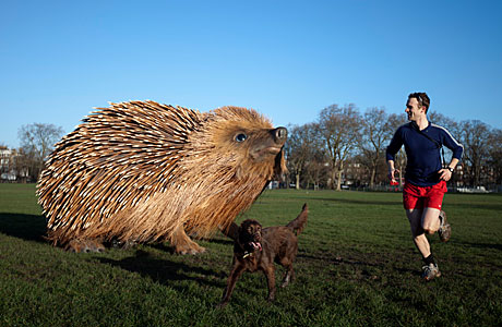 A man and dog narrowly escape a spiny death (AP Images)
