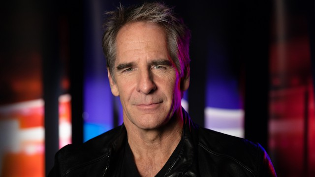 Scott Bakula (actor, Quantum Leap)