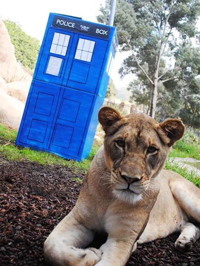 (Pic: Santa Barbara Zoo)