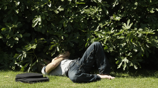 A man shades his head in bushes as he relaxes by Trafalgar Square, during a hot weather spell in London, Wednesday June 24, 2009. (AP Photo/Matt Dunham)