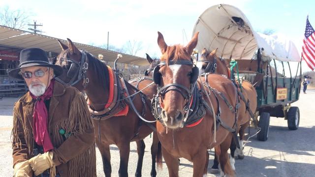 Ron Dakotah McGilvrey with horse & wagon at Sunday Funday, Bandera, TX