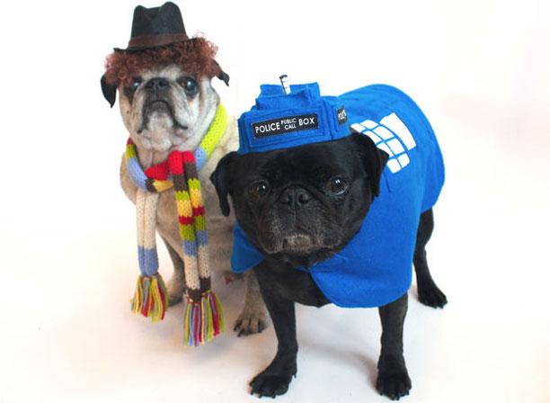 Dog cosplay by Iancmaltby