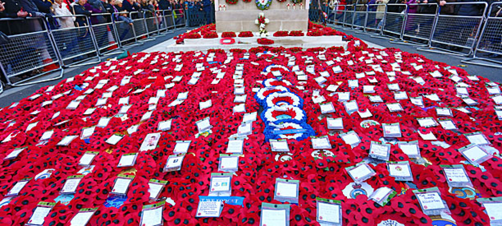 Poppies at the Cenotaph