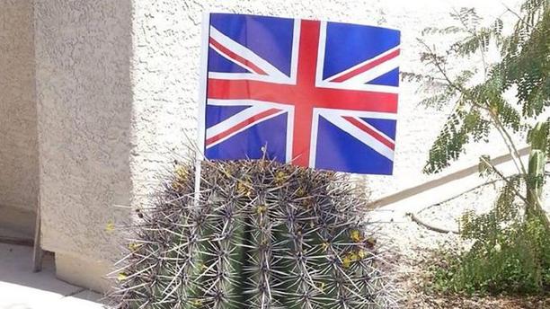 A Union Jack atop a Tuscon cactus (Facebook).
