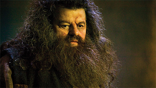 Robbie Coltrane as Hagrid in the Harry Potter franchise (Pic: Warner Bros)