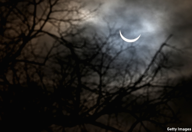 The eclipse is seen through the trees in Northampton, England. (Pic: Clive Mason/Getty Images)