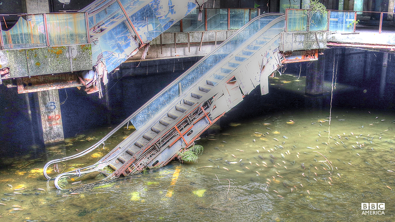 Episode 1  In the center of bustling Bangkok, an abandoned shopping mall is becoming a must-see on the tourist trail. In a large flooded area under the escalators the waters bubble and thrash with a rainbow of fish that now call this their home.