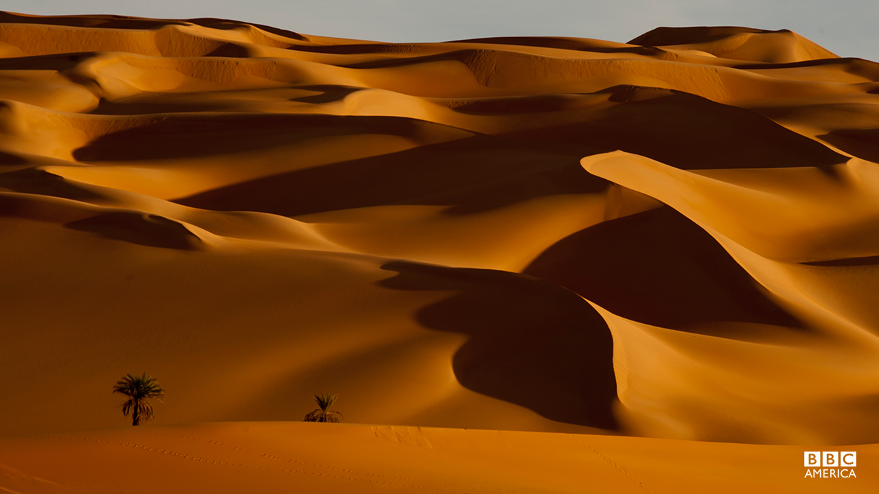 Episode 5  Libya's Sand Sea; 1,000,000 square kilometers of exquisitely sculpted banks of sand, is one of the hardest places on Earth for life to survive. As wind stirs the sand grains the dunes begin to 'sing'.