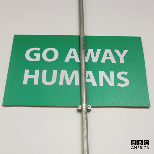 EMBARGOED-30-JUNE-go-away-humans-bugged