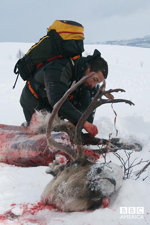 Bear Grylls in the Arctic Circle.