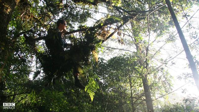 Bear Grylls in Guatemala.