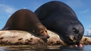 Sealions Rudder (Dominic West) and Fluke (Idris Elba) in 'Finding Dory'