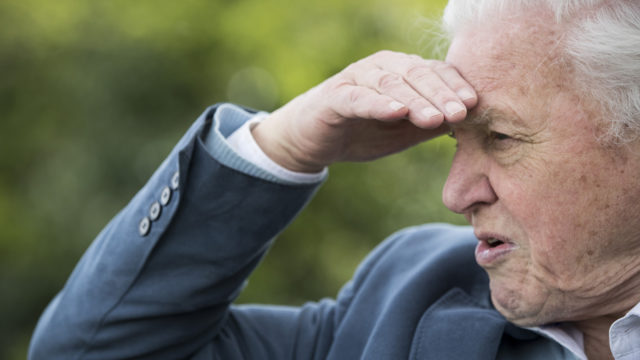 Sir David Attenborough Opens Woodberry Wetlands