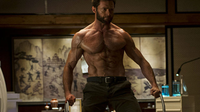 anglo_2000x1025_wolverine