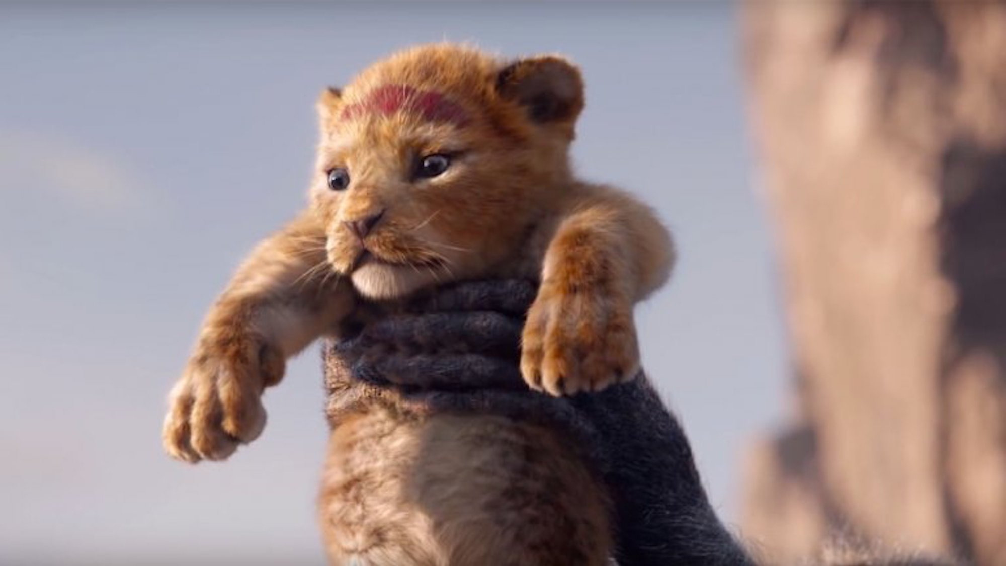 watch   u2018the lion king u2019 goes from cartoon to cgi in first