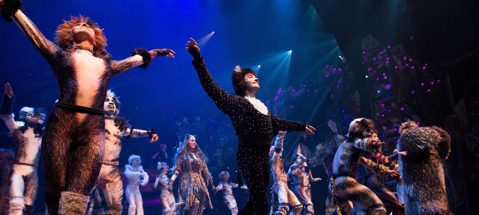 The First-Ever Revival of Andrew Lloyd Webber's Iconic CATS Opens on Broadway