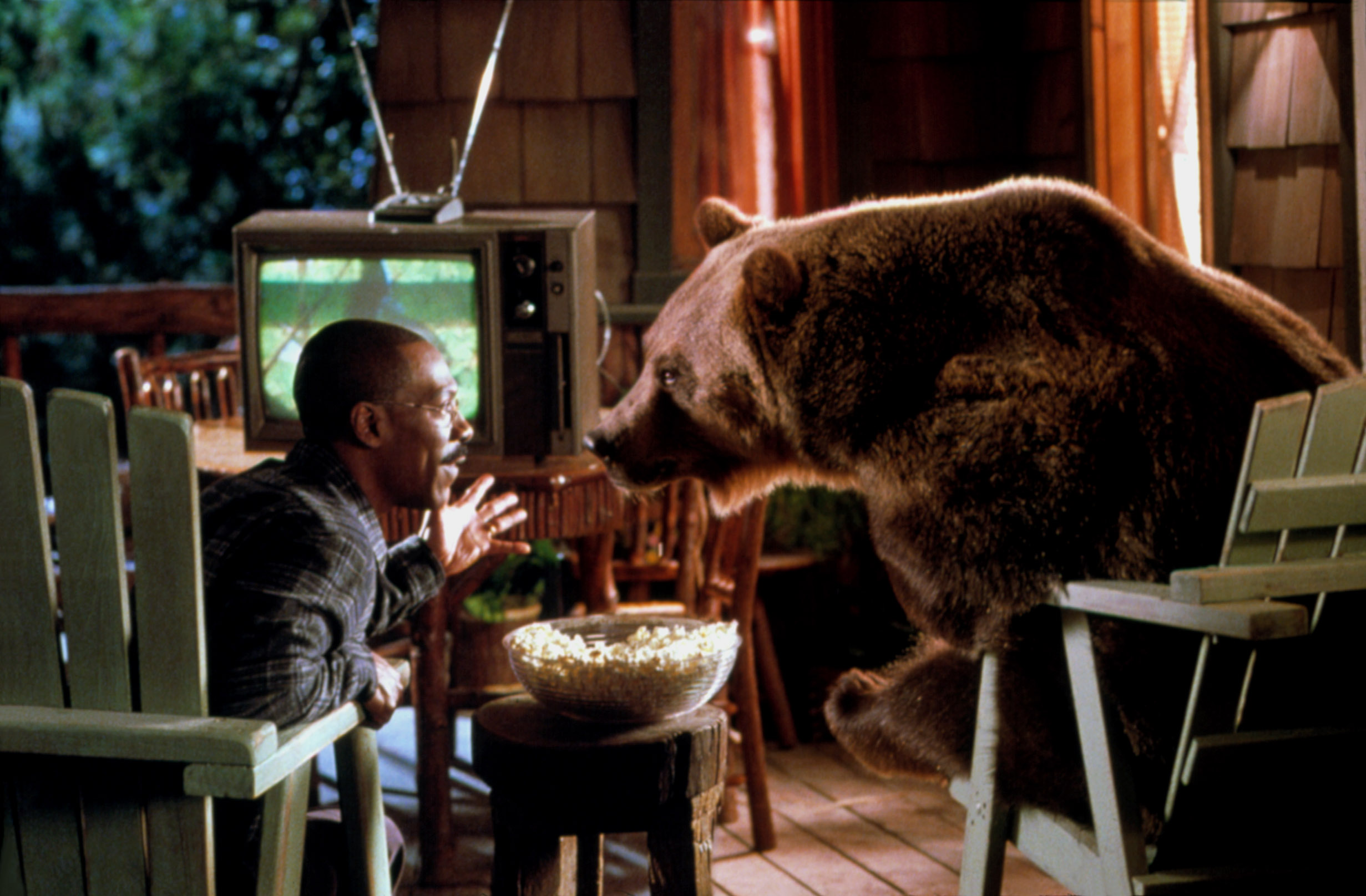 Best in Show: Which Animal Actor Has the Most Talent?
