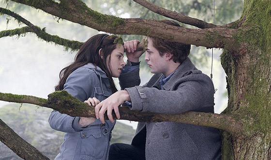What to See &#8211; <I>Twilight</I>