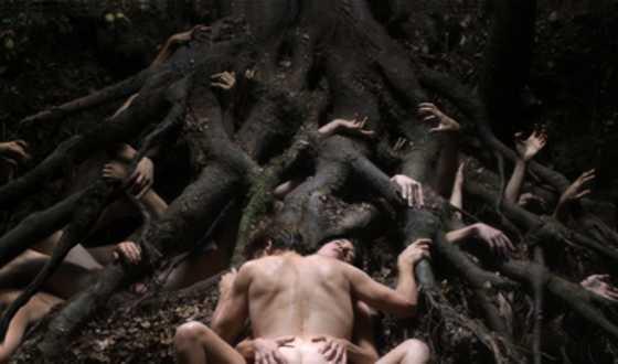 Web Stalker &#8211; Lars von Trier Unleashes His <i>Antichrist</i>